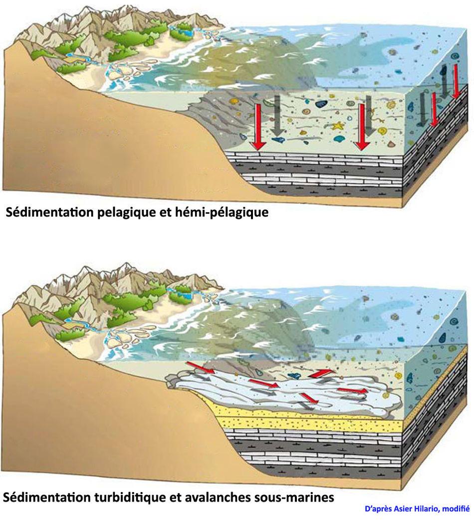 Schémas très théoriques montrant le contexte morphologique de la sédimentation pélagique (en haut) et turbiditique (en bas) dans le bassin des flyschs basque