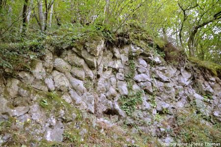 Autre affleurement de laves en coussins sur le bord de la même petite route une centaine de mètres plus bas que l'affleurement précédent, vers Soraluze (Paus Basque espagnol)