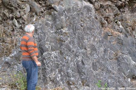 Zoom sur la semelle bréchique de la coulée de pillow-lavas d'Eibar