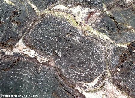 Section d'un pillow-lava d'environ 35cm de long et contenant des vacuoles disposées en fines zones concentriques