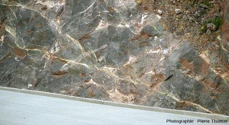 Vue générale sur l'affleurement à pillow-lavas d'Eibar