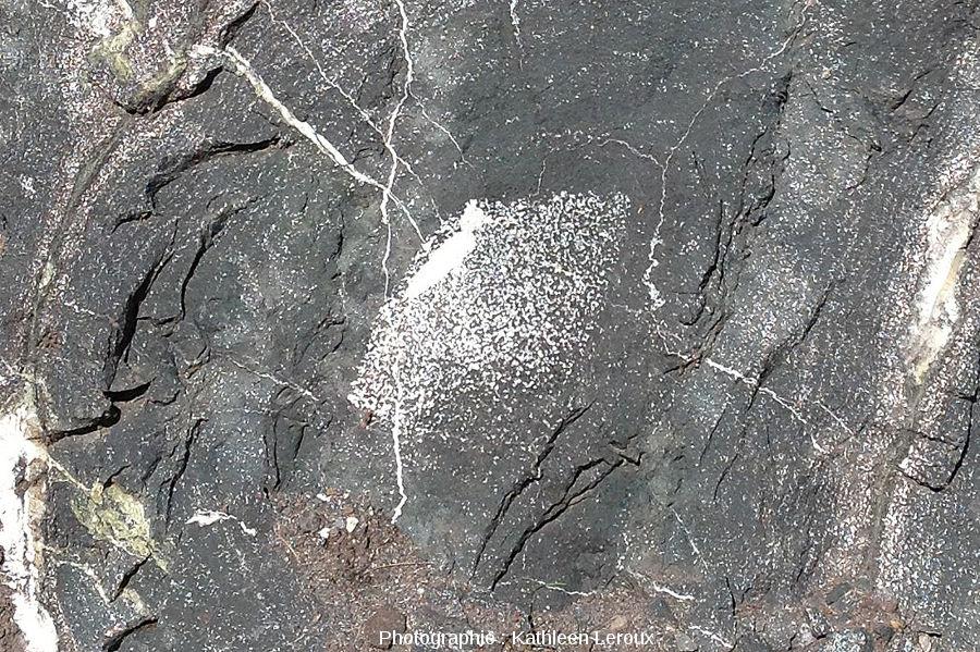 Zoom sur le cœur d'un coussin de lave dont le cœur est occupé par une accumulation de vacuoles pleines de calcite