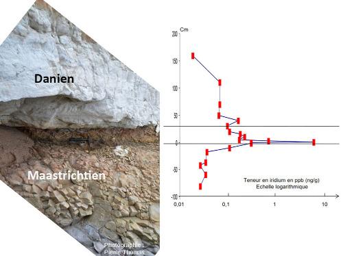 La limite Maastrichtien / Danien des figures précédentes, remise à l'horizontal, et un diagramme indiquant la teneur en iridium des différents niveaux de part et d'autre de cette limite K-T