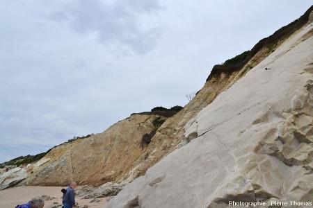 La surface de la couche calcaire du Maastrichtien visible à droite de la figure précédente