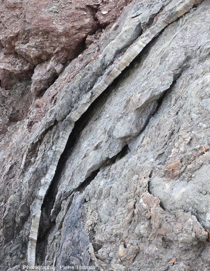 Autres filons de gypse fibreux sur la plage de Bidart, Pyrénées Atlantiques