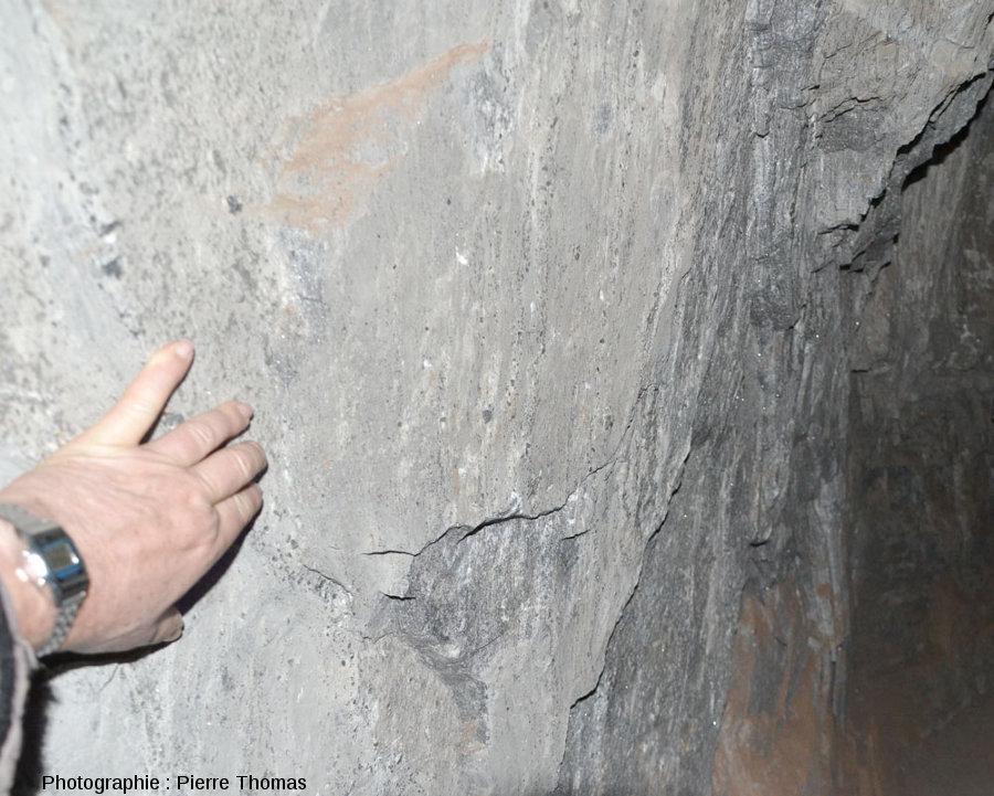 Détail de la paroi d'une salle dont (presque) toute la brèche salifère qui se trouvait à droite a été enlevée
