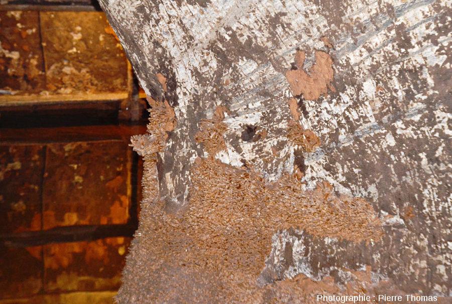 Zoom sur ce pilier de soutènement au milieu d'une salle inondée, mines de Bex (canton de Vaud, Suisse)