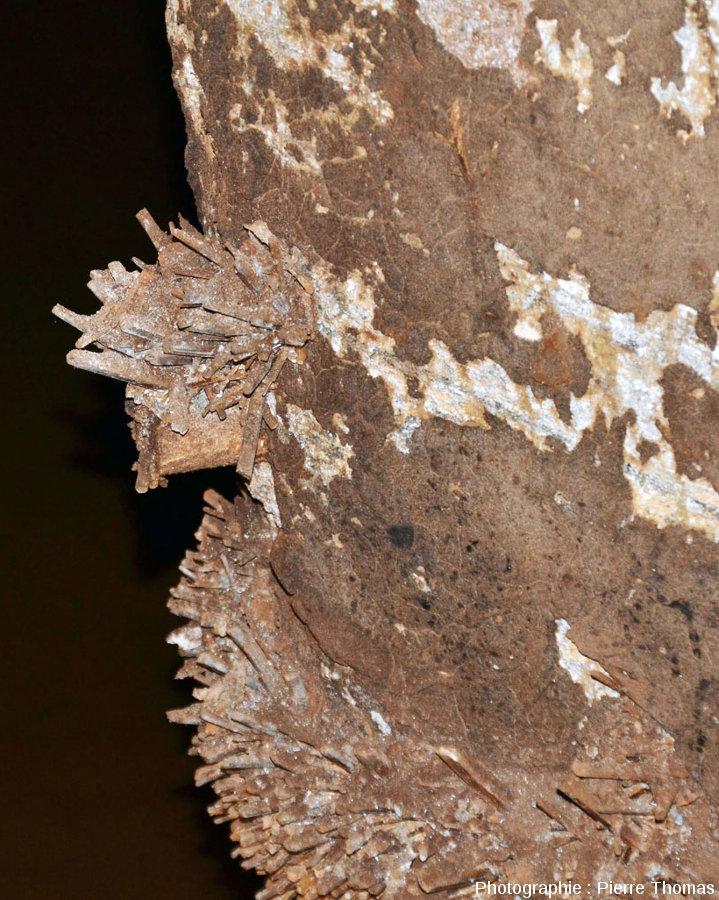 Néo-cristallisations de gypse sur un pilier de soutènement au milieu d'une salle inondée, mines de Bex (canton de Vaud, Suisse)