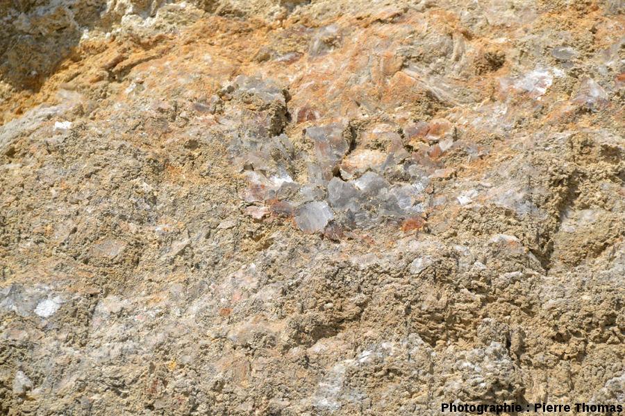 Détail de la base du niveau de gypse triasique du diapir de Lazer (Hautes Alpes)