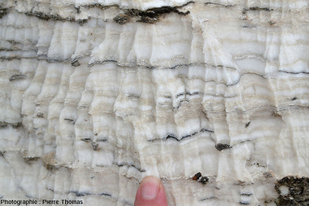 Rigoles de dissolution dans du gypse oligocène, Mormoiron, Vaucluse