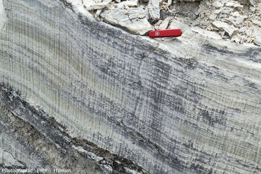 Rigoles de dissolution affectant des couches de gypse oligocène, Mormoiron, Vaucluse