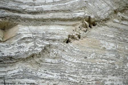 Vue rapprochée du pli-faille inverse affectant des couches de gypse
