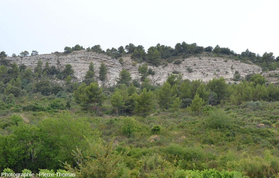 Vue générale sur l'affleurement de gypse au Nord-Ouest de Mormoiron (Vaucluse)