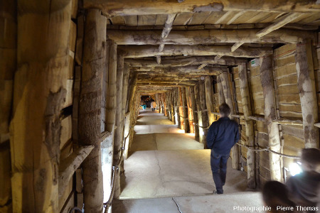 Partie haute de la descenderie permettant d'atteindre les galeries qui exploitaient le gypse, Portel-des-Corbières (Aude)