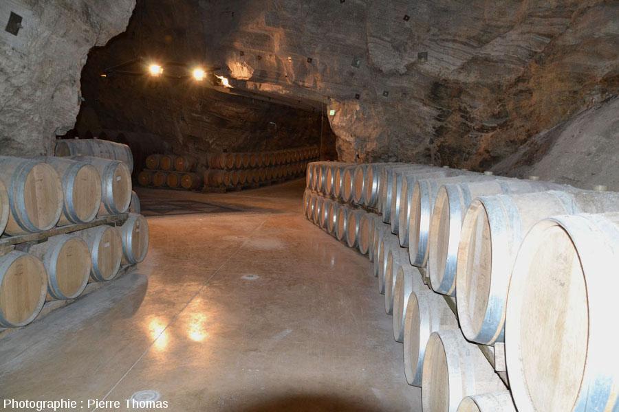 Tonneaux dans une galerie de Terra-Vinéa, Portel-des-Corbières (Aude)