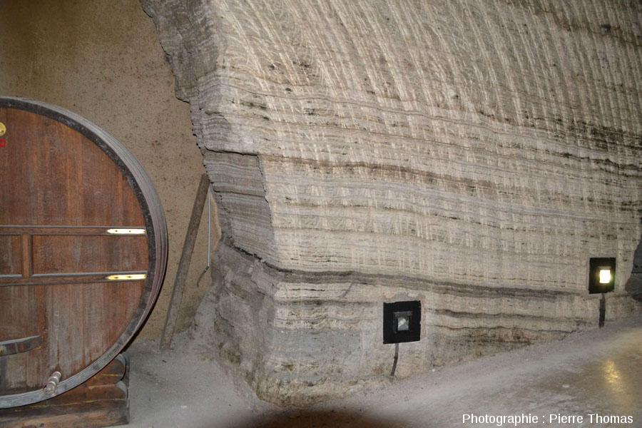 Détail de la stratification du gypse oligocène de Portel-des-Corbières (Aude)
