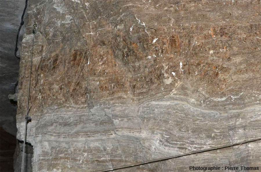 Zoom sur une couche de gypse en pied d'alouette