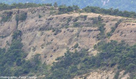 Détail de la face Est de la Serre d'Autruy (Hautes Alpes), depuis le lieu-dit La Baume