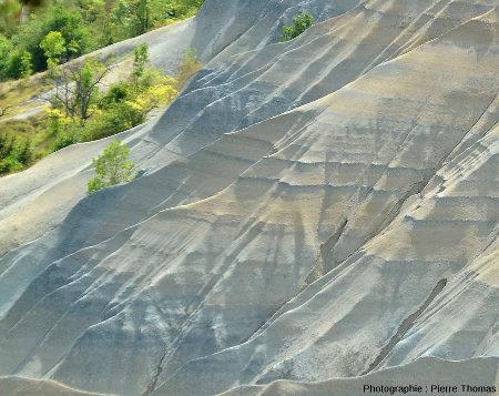 Zoom les alternances argileuses dans la partie amont du ravin de Corbœuf (Rosières, Haute Loire)