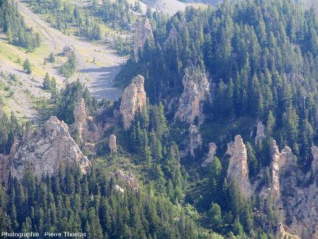 """Zoom sur les pinacles """"matures"""" qui dépassent de la forêt, visible sur la partie droite de la figure ci-dessus"""
