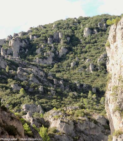 Versant Sud de la montagne de Liausson, qui ferme au Nord le cirque de Mourèze (Hérault)