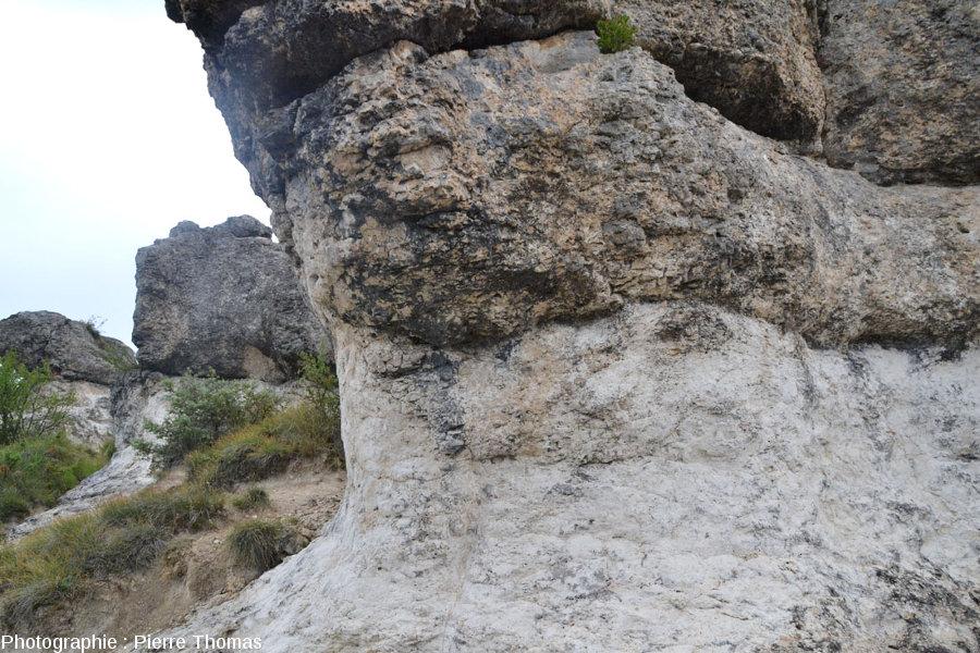 Base d'une masse calcaire chapeautant les rochers des Mourres, Forcalquier (Alpes de Haute Provence)