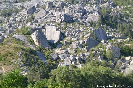 Zoom sur la partie amont de l'éboulis du Claps vue depuis le Sud