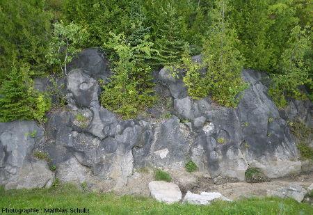 Vue générale de l'affleurement des paléomarmites de géant de Pointe-au-Pic, Québec