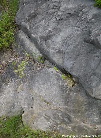 Vue plus rapprochée de quelques paléomarmites de géant de Pointe-au-Pic, Québec