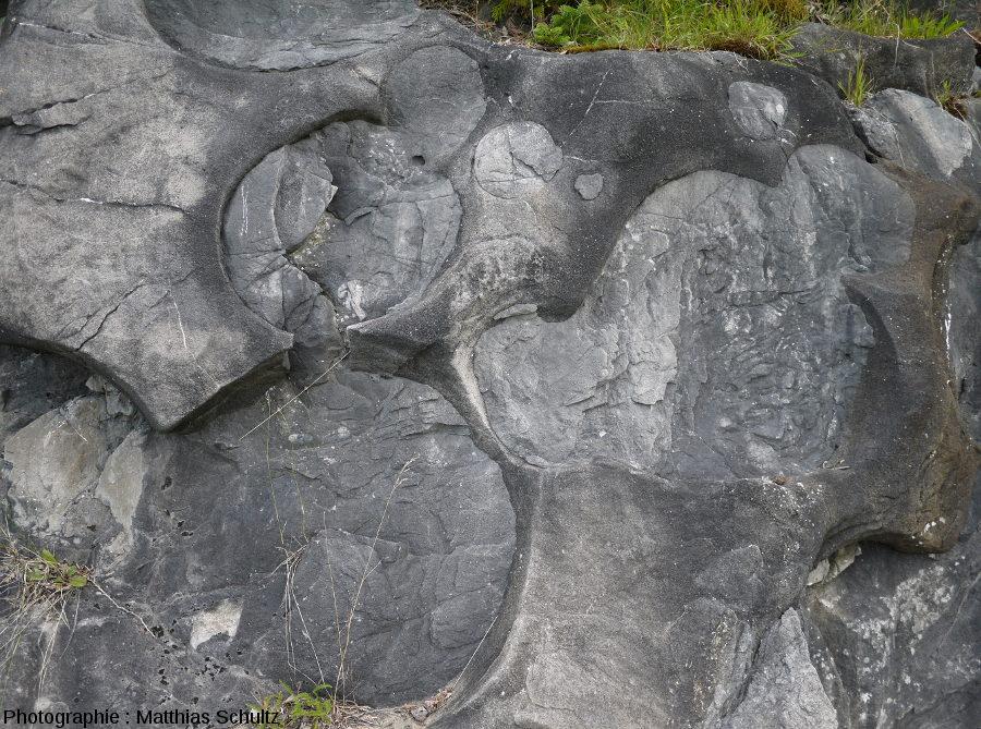 Paléomarmites de géant verticalisées, Pointe-au-Pic (Québec)