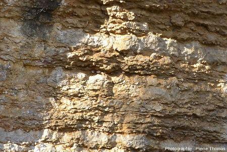 Vue d'en bas d'une carrière de calcaire à gruyphées non remblayée, vue depuis le chemin des Gorges, Saint-Fortunat