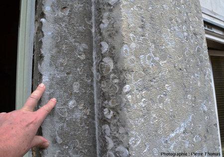 Zoom sur le montant de la porte bâti en calcaire à gryphées dont on voit bien les sections