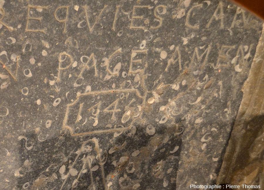 Détail sur le calcaire sinémurien et ses gryphées (Gryphea arcuata) de la dalle de la photo précédente, donnant la date du décès (1746)