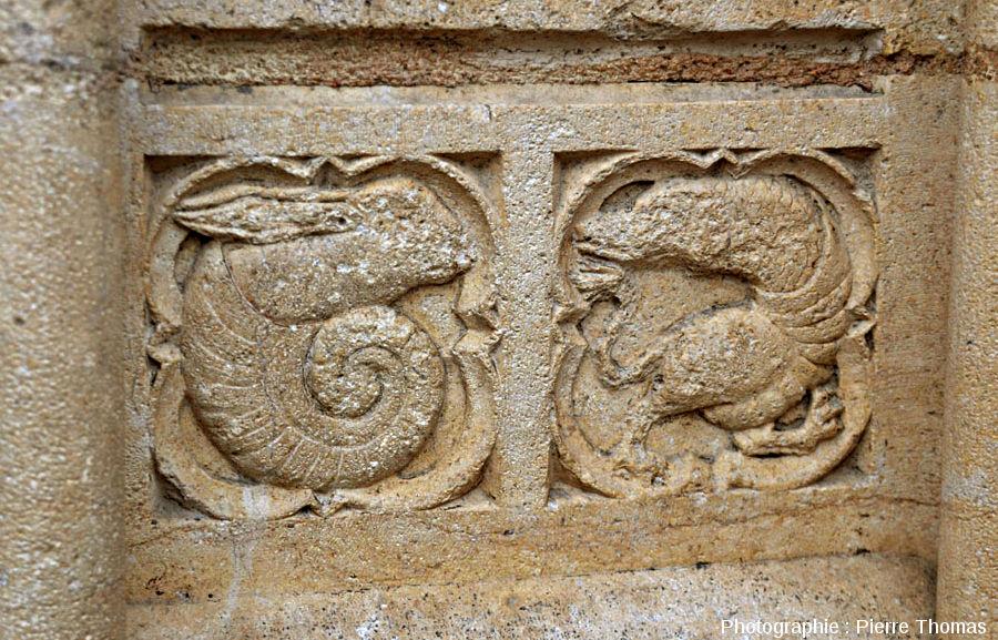 Double médaillon montrant, à gauche, l'ammonite à tête de lapin et, à droite, un autre animal difficilement classable, cathédrale Saint-jean de Lyon