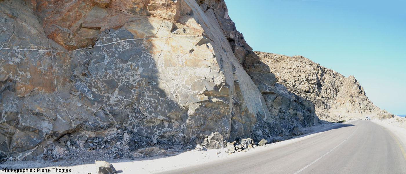 L'affleurement précédent, sur le bord de la route n°49 (Oman)