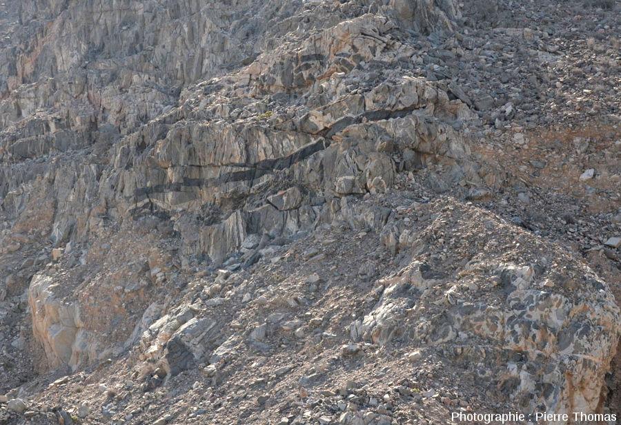 Détail sur la partie inférieure de la falaise précédente, Oman