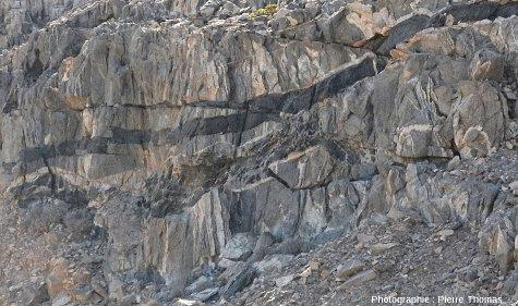 Zoom sur le filon basique et, dessous, un filon granite-gabbro