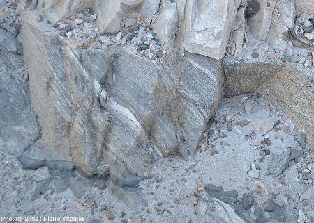 Zoom sur le contact entre l'encaissant gneissique et le granite, ici assez pauvre en gabbro (on en voit quand même en haut à droite)