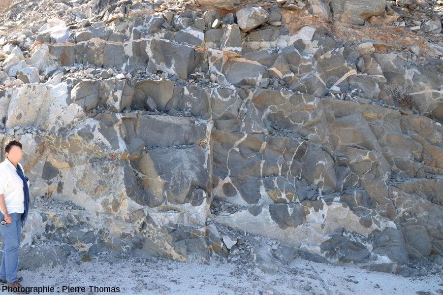 Vue globale d'un autre secteur du bord de route, côte du Dhofar, Sultanat d'Oman