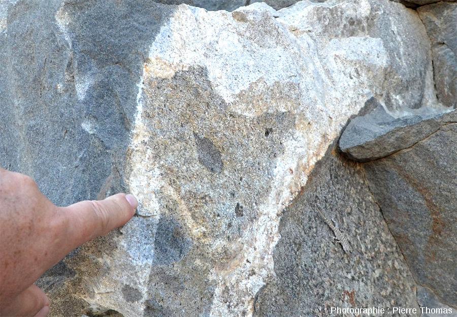 Vue rapprochée sur la masse de granite inter-gabbro, contenant une enclave de roche de teinte intermédiaire, contenant elle-même une enclave de gabbro