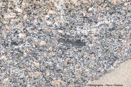 Zoom sur un bloc de granite de l'Aber Ildut montrant une enclave basique