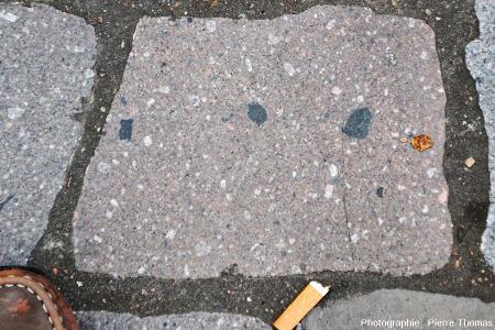Un pavé de l'allée d'Italie (Lyon 7ème), pavé en rhyolite/microgranite,pour ne pas oublier qu'à côté du plutonisme, il y a aussi du volcanisme dans les zones de collision