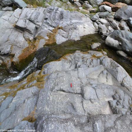 Affleurement de conglomérat étiré (méta-conglomérat), vallée du Torrente Germanasca, au Sud-Ouest de Perosa Argentina, Piemont, Italie