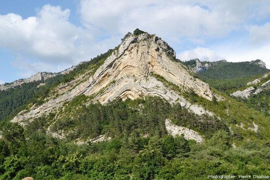 Anticlinal affectant des calcaires du Jurassique supérieur (Tithonien et Kimméridgien) et dont le cœur montre une très belle disharmonie, Hautes Alpes