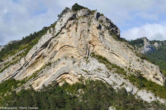 Image brute d'un anticlinal de la haute vallée du Buech (Hautes Alpes)