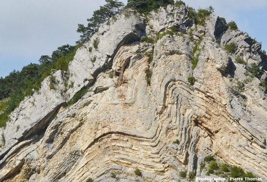 Détail sur les plis de seconds ordre affectant le cœur de cet anticlinal disharmonique des Hautes Alpes