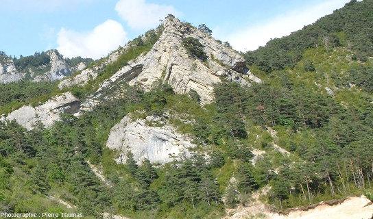 Anticlinal affectant des calcaires du Jurassique supérieur à cœur disharmonique, Hautes Alpes