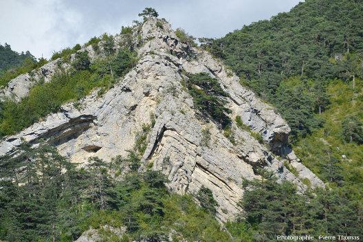 Vue rapprochée d'un anticlinal affectant des calcaires du Jurassique supérieur à cœur disharmonique, Hautes Alpes