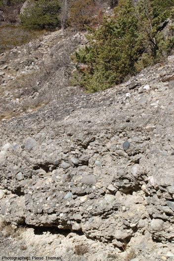 Détail d'une couche de poudingue à gros galets, interstratifiée entre des couches constituées de galets de plus petite taille