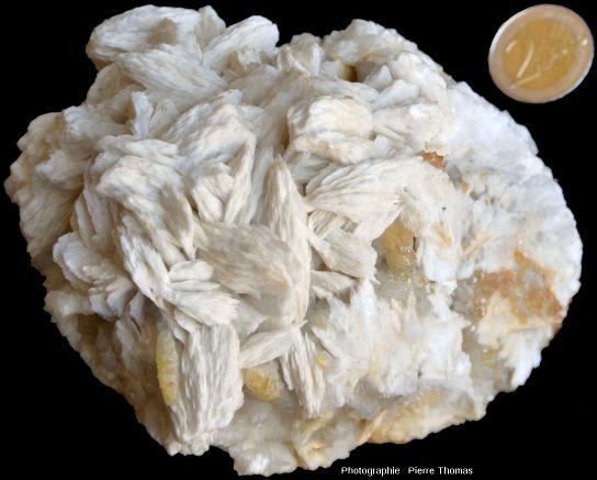 Échantillon de barytine crêtée dont certaines crêtes sont recouvertes de cristaux de quartz (souvent jaune)